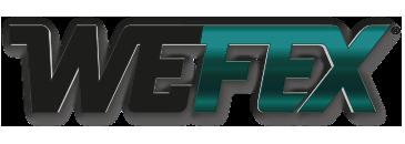 WEFEX-Diamantwerkzeuge-Diamanttrennscheiben-Diamantbohrkronen-Fachhandelswerkzeuge